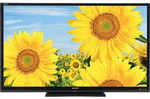 Rent 65 inch LCD